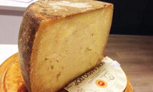 フィオーレサルドチーズ