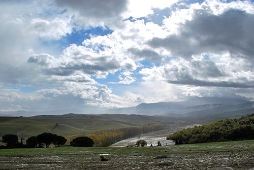 雨上がりのオルチャ渓谷の大地