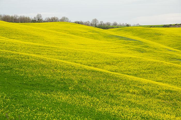 春のオルチャ渓谷