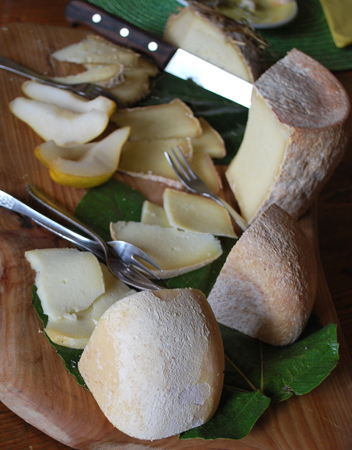 ペコリーノチーズ試食