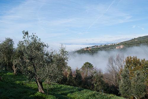 霧のヴィンチ村