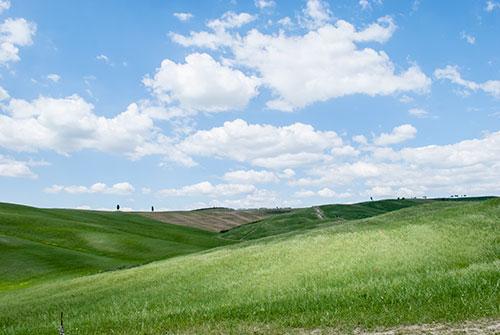 緑の丘陵地