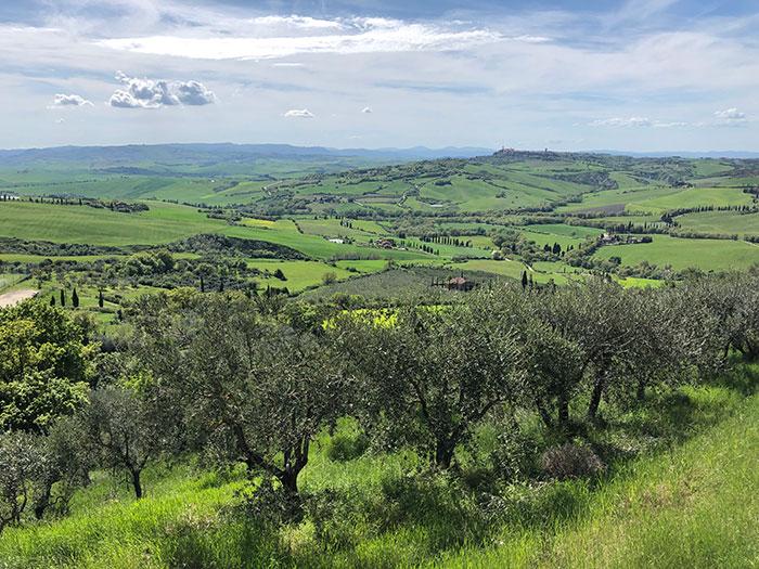モンティッキエッロからの眺め