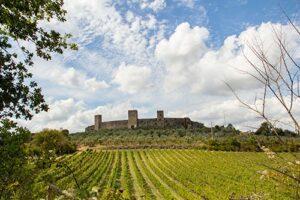 モンテリッジョーニの城塞