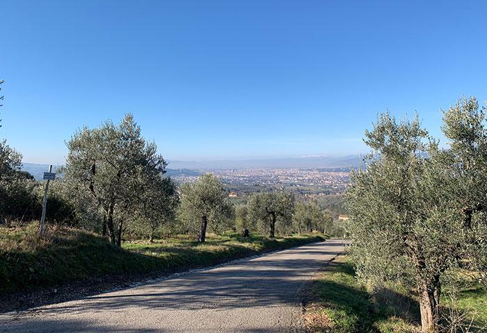 坂道とフィレンツェ
