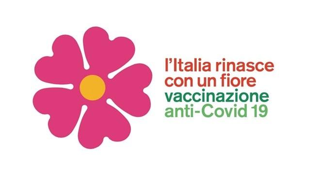 ワクチンの花プリムラ